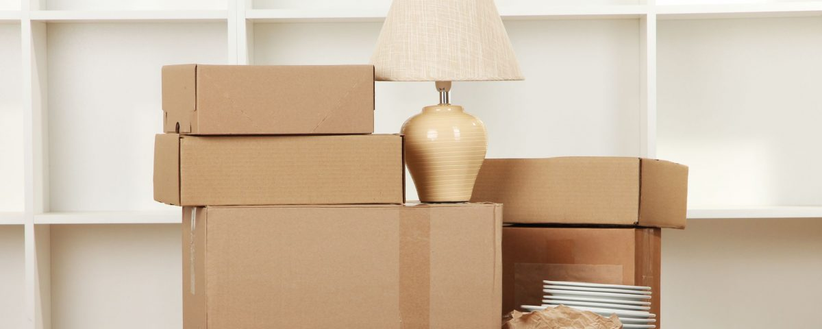 Lamp plates and moving boxes