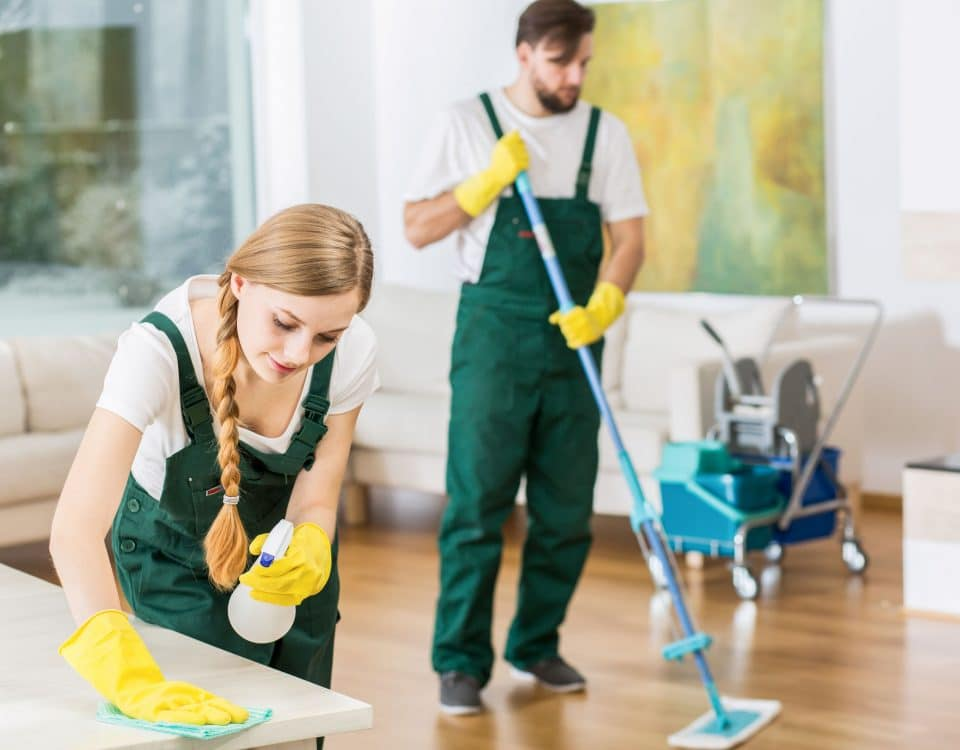 Professionals Cleaning House